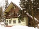 Комбинированные дома_8
